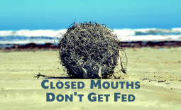 Closed Mouths Don't Get Fed