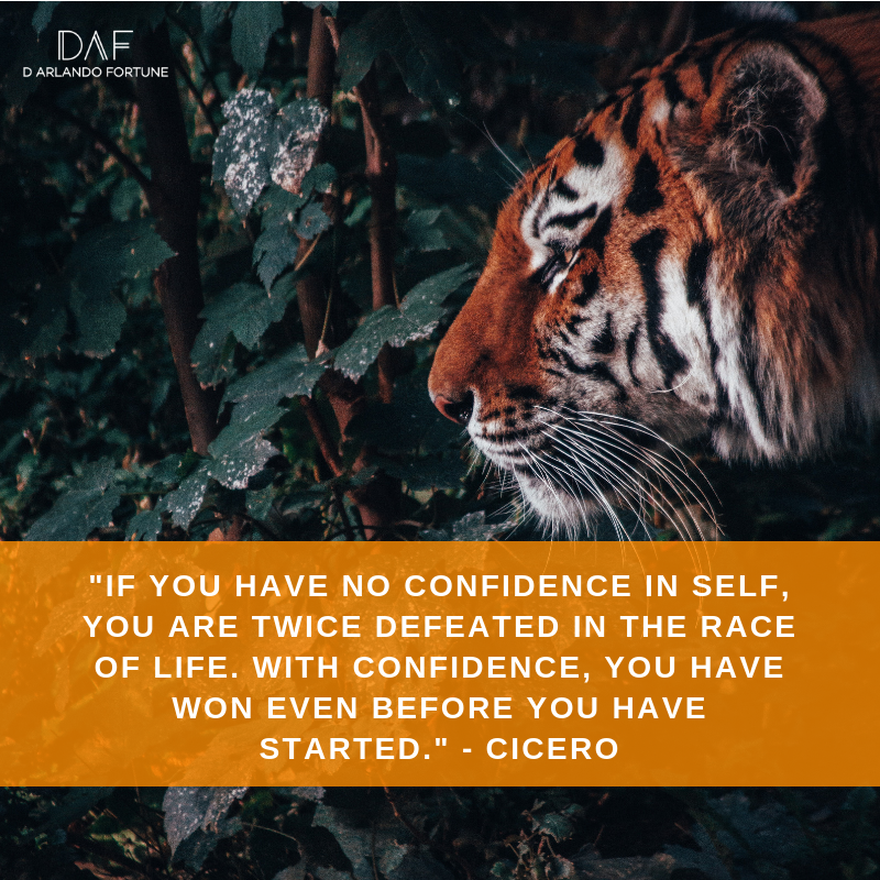 If you have no confidence in self